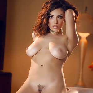 Darcie Dolce Knows How To Shake Her Body As She Strips