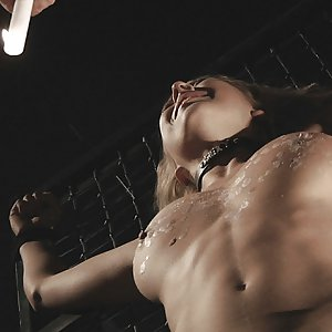 If you like beautiful huge breasts then Mandy is the perfect babe to play with and bound in ropes. She has the perfect reaction in the bdsm game. This is about whip, hot wax and breast squeezing. Crying is the cream on the cake and the beauty is willing to serve. If you love beauty, you must see this.